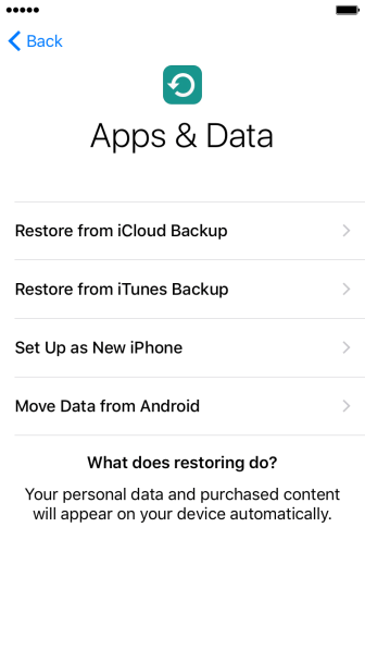 Press Restore from iCloud Backup.