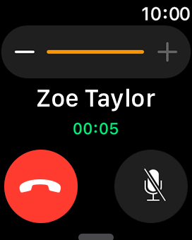 Press the end call icon to end the call and return to the home screen.