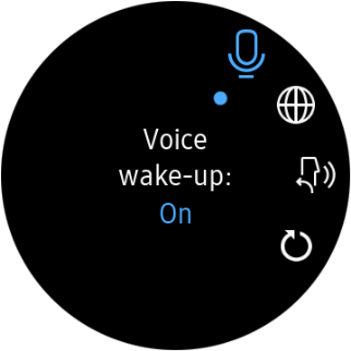 Press the voice activation icon to turn the function on or off.