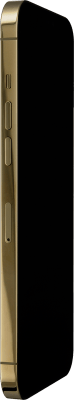 Apple iPhone 12 Pro Max - Gold