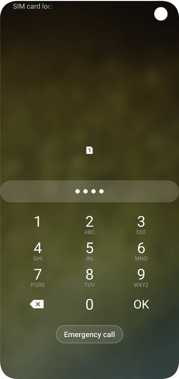 If you're asked to key in your PIN, do so and press OK. The default PIN is 1111.