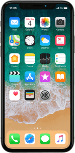 Apple iPhone X (iOS 11.1)